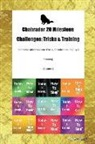 Todays Doggy - Chabrador 20 Milestone Challenges: Tricks & Training Chabrador Milestones for Tricks, Socialization, Agility & Training Volume 1