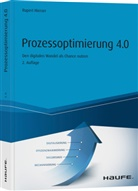 Rupert Hierzer - Prozessoptimierung 4.0