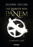 Suzanne Collins, Sylke Hachmeister, Peter Klöss - Die Tribute von Panem 3. Flammender Zorn