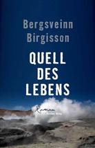 Bergsveinn Birgisson, Eleonore Gudmundsson - Quell des Lebens