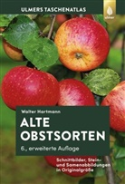 Walter Hartmann - Alte Obstsorten