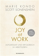 Mari Kondo, Marie Kondo, Scott Sonenshein - Joy at Work