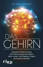 Marc Dingman - Das Gehirn