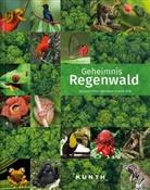 KUNTH Verlag, KUNT Verlag - Geheimnis Regenwald