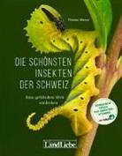 Thomas Marent - Die schönsten Insekten der Schweiz