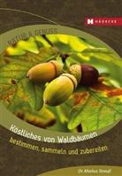 Markus Strauß, Markus (Dr.) Strauss - Köstliches von Waldbäumen
