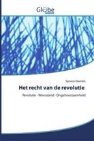 Symeon Mavridis - Het recht van de revolutie