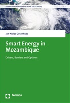 Jan-Niclas Gesenhues - Smart Energy in Mozambique