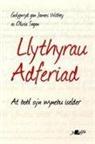 James Sagan Withey - Darllen Yn Well: Llythyrau Adferiad - At Bobl Sy''n Wynebu Iselder