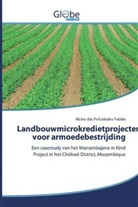 Alcino das Felicidades Fabião - Landbouwmicrokredietprojecten voor armoedebestrijding