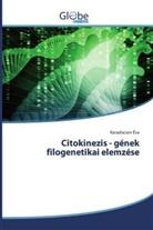 Karadocsev Éva - Citokinezis - gének filogenetikai elemzése