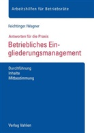 Sabin Feichtinger, Sabine Feichtinger, Magdalena Wagner - Betriebliches Eingliederungsmanagement