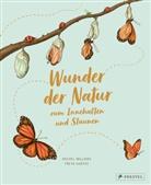 Freya Hartas, Rachel Williams, Freya Hartas - Wunder der Natur zum Innehalten und Staunen