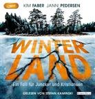 Ki Faber, Kim Faber, Janni Pedersen, Stefan Kaminski - Winterland, 3 Audio-CD, 3 MP3 (Hörbuch)