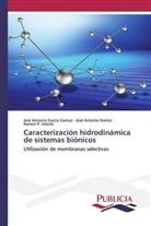 José Antoni García Gamuz, José Antonio García Gamuz, José Antoni Ibañez, José Antonio Ibañez, VA, Ramón P. Valerdi - Caracterización hidrodinámica de sistemas biónicos