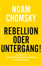 Noam Chomsky - Rebellion oder Untergang!