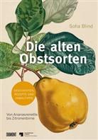 Sofia Blind - Die alten Obstsorten
