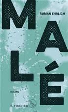 Roman Ehrlich - Malé