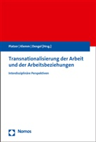 Udo Dengel, Matthia Klemm, Matthias Klemm, Hans-Wolfgang Platzer - Transnationalisierung der Arbeit und der Arbeitsbeziehungen