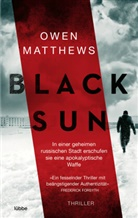 Owen Matthews - Black Sun