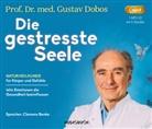 Gustav Dobos, Clemens Benke - Die gestresste Seele, 1 Audio-CD, MP3 (Hörbuch)