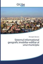 Gheorghe Salceanu - Sistemul informational geografic imobiliar-edilitar al unui municipiu