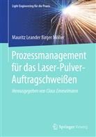 Mauritz Leander Birger Möller, Claus Emmelmann - Prozessmanagement für das Laser-Pulver-Auftragschweißen