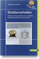 Gottfried W. Ehrenstein, Gottfried Wilhelm Ehrenstein - Strukturverhalten