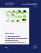 Malte Schümann - Eine skalenübergreifende Charakterisierung der Partikelstruktur von hartmagnetischen magnetorheologischen Elastomeren