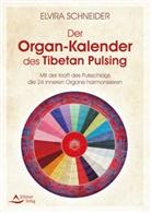 Elvira Schneider - Der Organ-Kalender des Tibetan Pulsing