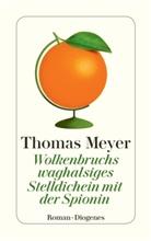 Thomas Meyer - Wolkenbruchs waghalsiges Stelldichein mit der Spionin