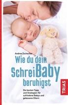 Andrea Zschocher - Wie du dein Schreibaby beruhigst