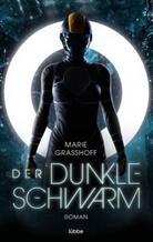 Marie Graßhoff - Der dunkle Schwarm