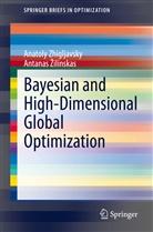 Anatol Zhigljavsky, Anatoly Zhigljavsky, Antanas Zilinskas - Bayesian and High-Dimensional Global Optimization