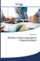 Szávai Norbert - Általános iskolai szegregáció Magyarországon