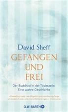 David Sheff - Gefangen und frei