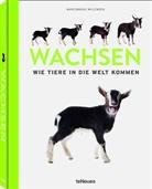 Marlonneke Willemsen - Wachsen