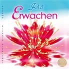 Sayama - JETZT ERWACHEN, Audio-CD (Hörbuch)