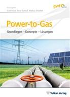 Frank Graf, Ren Schoof, René Schoof, Markus Zdrallek - Power-to-Gas