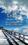 Alfonso Califano - Geheimnisse des Lichts - Weisheit und Kraft der jenseitigen Welt - Autobiografie eines medialen Heilers