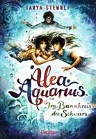 Claudia Carls, Tanya Stewner, Claudia Carls - Alea Aquarius 7. Im Bannkreis des Schwurs