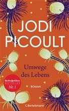 Jodi Picoult - Umwege des Lebens