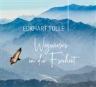 Eckhart Tolle - Wegweiser in die Freiheit