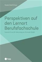 Claudio Caduff, Claudio Caduff - Perspektiven auf den Lernort Berufsfachschule