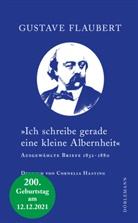 Gustave Flaubert, Rainer Moritz, Cornelia Hasting - »Ich schreibe gerade eine kleine Albernheit«