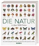 Davi Burnie, David Burnie - Die Natur in über 5000 Fotos