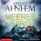 Stefan Ahnhem, David Nathan - Meeressarg, 2 Audio-CD, 2 MP3 (Hörbuch)