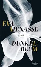 Eva Menasse - Dunkelblum