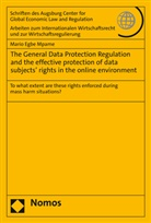 Mario Egbe Mpame - The General Data Protection Regulation and the effective protection of data subjects' rights in the online environment