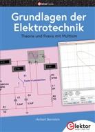 Herbert Bernstein - Grundlagen der Elektrotechnik